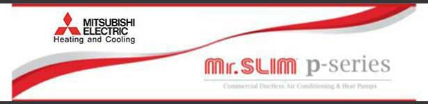 mr-slim-p-new-1